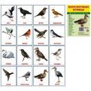 Перелетные птицы.16 раздаточных карточек с текстом