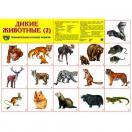 Демонстрационный плакат Дикие животные -2, А-2