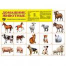 Демонстрационный плакат Домашние животные, А-2