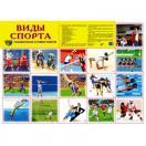 Демонстрационный плакат Виды спорта А-2