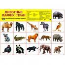 Демонстрационный плакат  Животные жарких стран, А-2