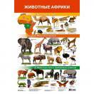 Животные Африки 2705