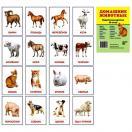 Домашние животные. 16 раздаточных карточек с текстом