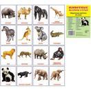 Животные жарких стран 16 раздаточных карточек с текстом