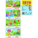 Дем. картинки СУПЕР Времена года. Лето. 8 раздаточных карточек с текстом(63х87мм)